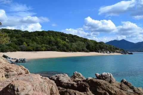 Camping L'esplanade : Camping Propriano